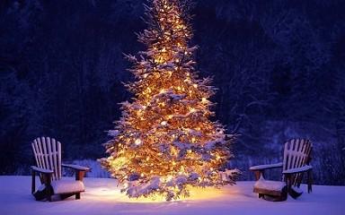 Auguri Buon Natale Frasi più belle da in